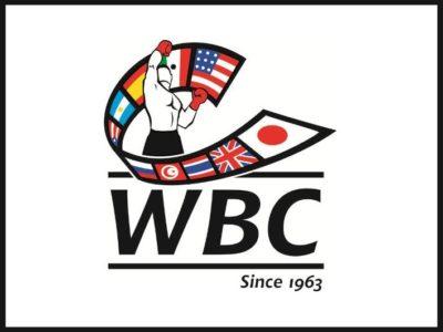 WBC назначил аукцион заявок на бой Лара — Мартиросян