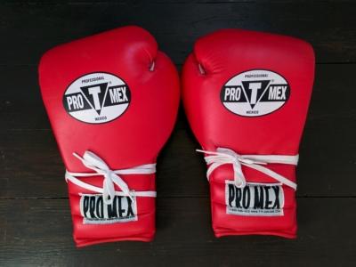 Тренировочные перчатки Pro Mex 18 oz
