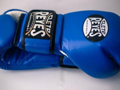 Тренировочные перчатки Cleto Reyes 14 oz